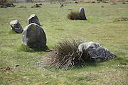 Gors Fawr stone circle, Presli Hills, Pembrokeshire, Wales