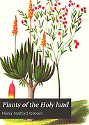 Frontispiece and title page from Plants Of The Holy Land: With Their Fruits And Flowers, Beautifully Illustrated By Original Drawings, Colored From Nature by Rev. Osborn, H. S. (Henry Stafford), 1823-1894 Published in Philadelphia, By J.B. Lippincott & Co. in 1861