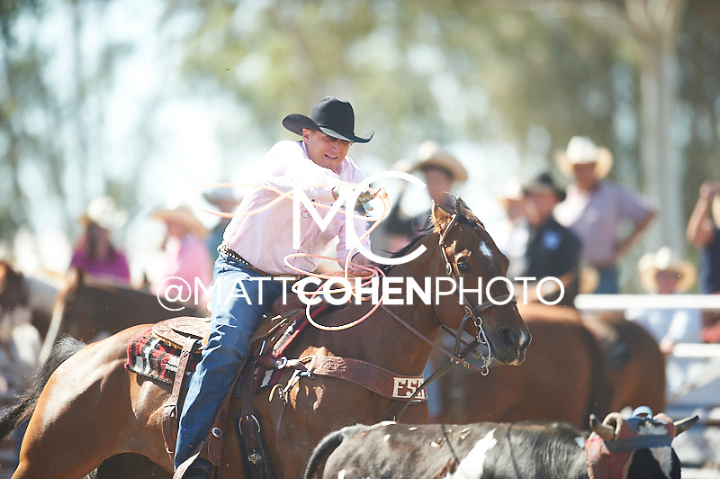 Team roper Keven Daniel of Franklin, TN competes at the Clovis Rodeo in Clovis, CA.<br /> <br /> <br /> UNEDITED LOW-RES PREVIEW<br /> <br /> <br /> File shown may be an unedited low resolution version used as a proof only. All prints are 100% guaranteed for quality. Sizes 8x10+ come with a version for personal social media. I am currently not selling downloads for commercial/brand use.
