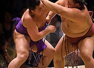 Ama (left) and Kisenosato compete in the semi-final round of Day 2 of Grand Sumo Tournament Los Angeles 2008, Los Angeles Sports Arena, Los Angeles, California