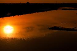 Il complesso produttivo delle saline è situato nel comune italiano di Margherita di Savoia (nome dato dagli abitanti in onore alla regina d'Italia che molto si adoperò nei confronti dei salinieri) nella provincia di Barletta-Andria-Trani in Puglia. Sono le più grandi d'Europa e le seconde nel mondo, in grado di produrre circa la metà del sale marino nazionale (500.000 di tonnellate annue).All'interno dei suoi bacini si sono insediate popolazioni di uccelli migratori e non, divenuti stanziali quali il fenicottero rosa, airone cenerino, garzetta, avocetta, cavaliere d'Italia, chiurlo, chiurlotello, fischione, volpoca..Il sole al tramonto si riflette in un bacino