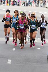NYC Marathon, Goucher