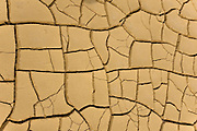 Cracked dry earth in an arid area