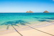Palm tree shadows on Lanikai Beach, the Mokulua Islands offshore, Kailua, Oahu, Hawaii