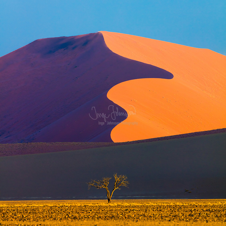 """Sossusvlei is a salt and clay pan surrounded by high red dunes, located in the southern part of the Namib Desert, in the Namib-Naukluft National Park of Namibia. The name """"Sossusvlei"""" is often used in an extended meaning to refer to the surrounding area (including other neighbouring vleis such as Deadvlei and other high dunes), which is one of the major visitor attractions of Namibia.<br /> <br /> The name """"Sossusvlei"""" is of mixed origin and roughly means """"dead-end marsh"""". Vlei is the Afrikaans word for """"marsh"""", while """"sossus"""" is Nama for """"no return"""" or """"dead end"""". Sossusvlei owes this name to the fact that it is an endorheic drainage basin (i.e., a drainage basin without outflows) for the ephemeral Tsauchab River."""