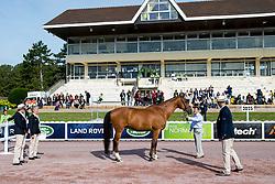 Sophie Christiansen, (GBR), Janeiro 6 - Horse Inspection Para Dressage - Alltech FEI World Equestrian Games™ 2014 - Normandy, France.<br /> © Hippo Foto Team - Jon Stroud<br /> 25/06/14