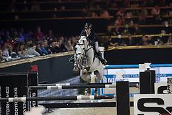 Thomas Gilles, BEL, Cantario<br /> Open Sires of the World Zangersheide<br /> Vlaanderens Kerstjumping Memorial Eric Wauters<br /> © Dirk Caremans<br /> 27/12/2016
