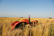 Old propane powered Allis Chalmers tractor on the side of a road just east of Shattuck, Oklahoma
