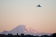 Mount Rainier and kite at sunset from the University of Washington campus, Seattle, Washington.