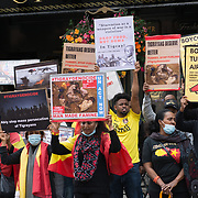 Tigray Famine and Anti-Turkish Drones Protest in London