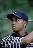 GOLF_Tiger Woods