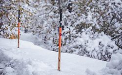 THEMENBILD - Schneestangen am Straßenrand im Schneefall , aufgenommen am 13. November 2019, Piesendorf, Österreich // Snow poles at the roadside in snowfall on 2019/11/13, Piesendorf, Austria. EXPA Pictures © 2019, PhotoCredit: EXPA/ Stefanie Oberhauser