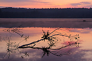 Alcona Pond, Au Sable River<br /> <br /> Huron National Forest, Northeast Lower Michigan