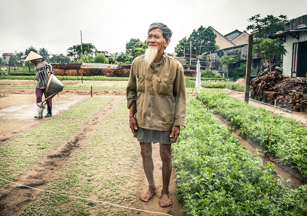 Portrait of an old vietnamese guy with a long beard standing in a vegetable garden. Tra Que village, Hoi An area, Vietnam, Asia