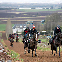Lucinda Russell Arlary Farm Stables, Milnathort….30.03.17<br />Arthur pictured on the gallops above Loch Leven ridden by Erin Walker<br />Picture by Graeme Hart.<br />Copyright Perthshire Picture Agency<br />Tel: 01738 623350  Mobile: 07990 594431