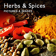 Food Pictures of Herbs & Spices