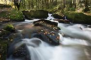 Golitha Falls near Liskeard, Cornwall