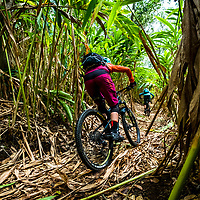 Ricky Westphal riding among the cardamon plantations, Kerala, India, March 2017.