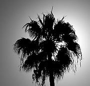 General Views round Sunset Bay resort/complex<br /> <br /> Sunday  31st January , 2016<br /> <br /> <br /> [Mandatory Credit; Peter SPURRIER/ntersport Images]