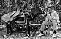 British golf champion Sir Henry Cotton seen at the Penina Golf Club in Portugal in September 1972. He is with his caddie, a donkey called 'Pasifico'. Photographed by Terry Fincher