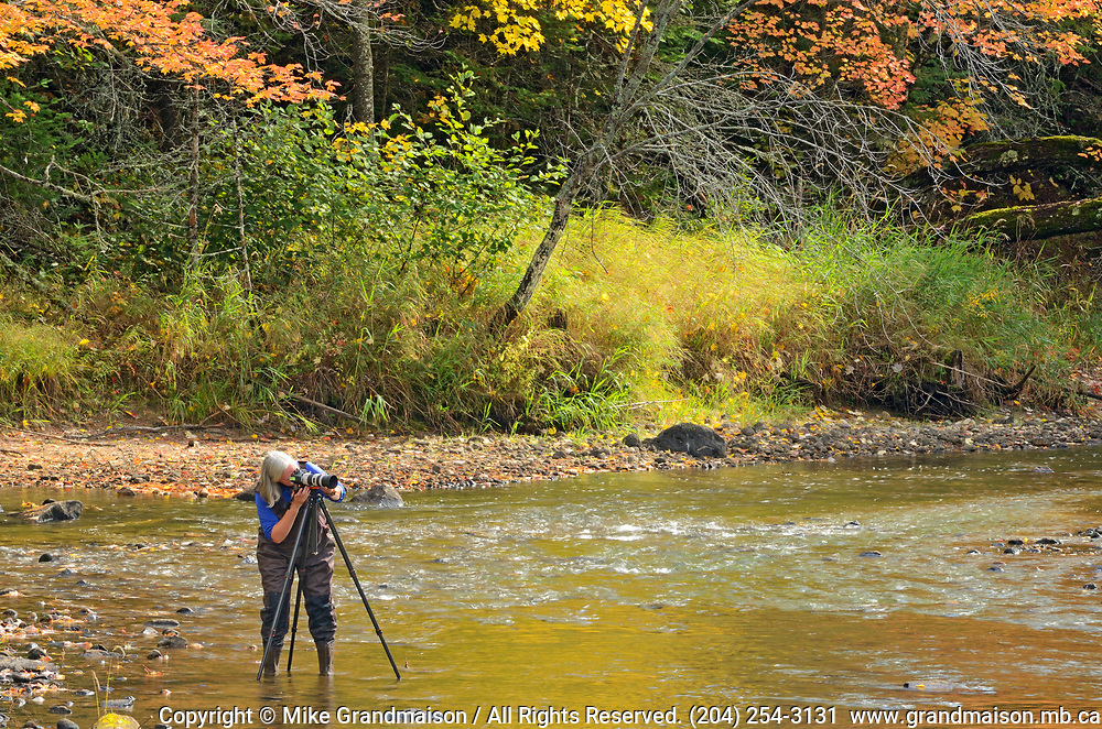 Photographer Tmi Reynolds hard at work in Dryberry Creek<br />Sioux Narrows<br />Ontario<br />Canada