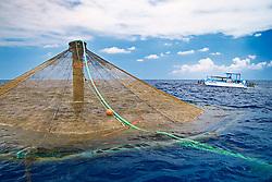 3,000-cubic-meter submersible pen installed in open ocean just off Kona Coast to raise Kona Kampachi, Hawaiian yellowtail, aka almaco jack or kahala, Seriola rivoliana, Kona Blue Water Farms, Big Island, Hawaii, USA, Pacific Ocean
