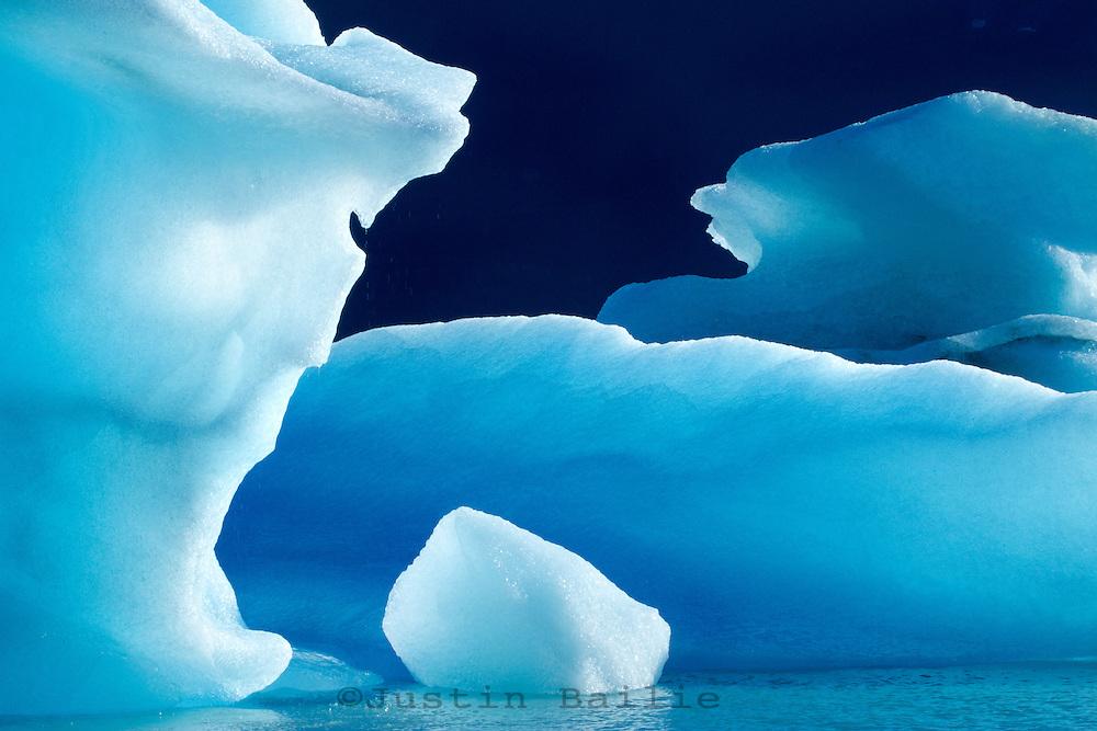 Icebergs floating in Alsek Lake. Glacier Bay National Park, AK.