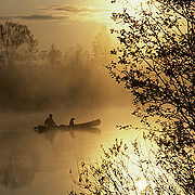 Canoeist and lab in canoe paddling across small lake. Morning sunrise.  Northern Minnesota.