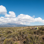 Hikers walk across the Shira Plateau on the Lemosho Trail on Mt. Kilimanjaro. This is enroute to Shira 1 Camp, with the peak of the mountain far in the distance partly obscured by clouds.