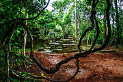 Before entering Banteay Kdei, there are ruins still in the jungle. The rain made the temple much more saturated in Greens.