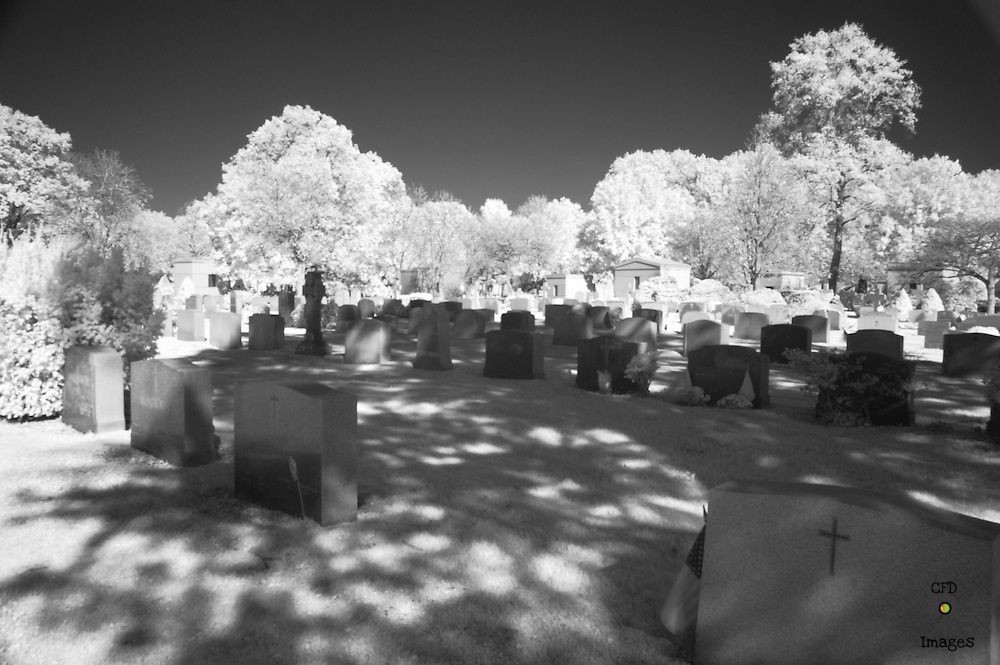 Tale from the Crypt, New York, New York City, NYC, Photos, Photography, Black & White, BNW, B&W, Central Park, Cemetery