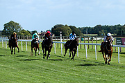 Laikaparty ridden by Hollie Doyle trained by Archie Watson, Audio ridden by Thore Hammer Hansen trained by Richard Hannon, Alfies Watch ridden by Fergus Sweeney trained by John O'Shea, Qinwan ridden by Rob Hornby trained by Andrew Balding and Lady Phyllis ridden by Charlie Bennett trained by Michael Attwater in The ITEC EPF Novice Median Auction Stakes (Class 5) - Mandatory by-line: Robbie Stephenson/JMP - 04/09/2019 - PR - Bath Racecourse - Bath, England - Bath Races