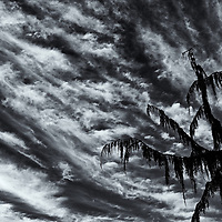 Clouds 2020<br />edited 9/2/20<br /> converted to B&W  9/2/20