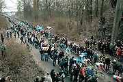 Riders enter the Forest of Arenberg, in the Paris Roubaix professional cycling race classic, won in 2012 by Belgian Tom Boonen - for the fourth time. The 256.5km race runs from Compiègne, near Paris, to Roubaix, northern France, crossing 51.5km of pavé - ancient cobblestones, along the way.