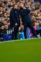 Football - 2019 / 2020 Premier League - Everton vs. Brighton & Hove Albion<br /> <br /> Grahma Potter manager of Brighton at Goodison Park.<br /> <br /> COLORSPORT/LYNNE CAMERON