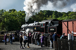 © Licensed to London News Pictures. <br /> 01/10/2016. <br /> Grosmont, UK.  <br /> <br /> Visitors and steam railway enthusiasts line up along the trackside to watch locomotive 80136 as it leaves Grosmont station during the North Yorkshire Moors Railway Autumn Steam Weekend. <br /> The hugely popular railway line runs a service between Pickering and Whitby through the picturesque North yorkshire countryside and attracts thousands of visitors each year. <br /> <br /> Photo credit: Ian Forsyth/LNP