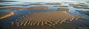 Sandy Shoreline, 9 Mile Beach, Newcastle, NSW, Australia,