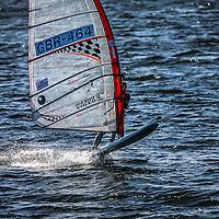 Stewards Cup persuit Race