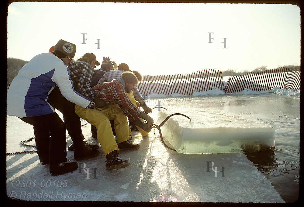 Crew strains to pull ice block from Pickerel Lake for St. Paul Winter Carnival ice sculptures. Minnesota