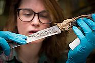 Metals Conservation 031116