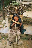 Nepal, region des Annapurna, jeune fille Chetri de 8 ans, porteuse de bois. // Nepal, Annapurna area, young Chetri girl, 8 years old, wood porter.