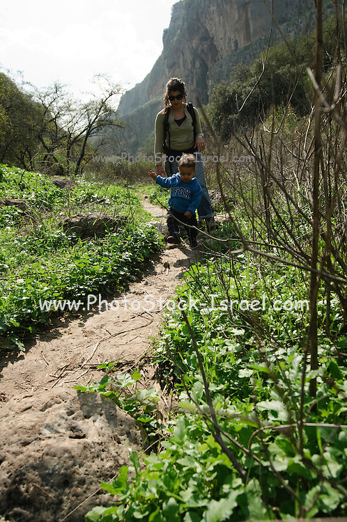 Israel, Galilee, Amud (Pillar) stream nature reserve and park female hiker and baby on the trail