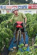 Chile Pepper Farm, South Korea