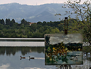 Il lago di Sartirana..Ducks on Sartirana lake, foreground a painting of the lake