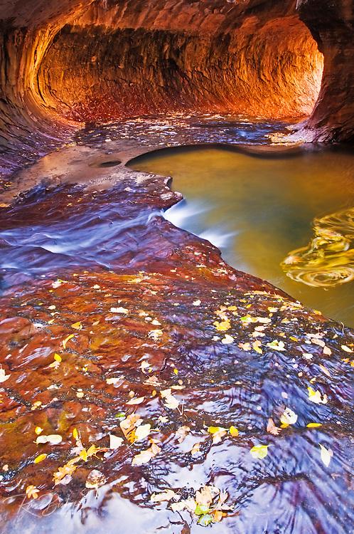The Subway along North Creek, Zion National Park, Utah