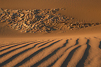 Death Valley Sand Dune. Composite of 9 images taken with a Nikon D3x and 50 mm f/1.4G lens (ISO 100, 50 mm, f/16, 1/80 sec) at different focus distances combined with Helicon Focus.