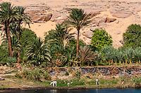 Egypt. Cruising the Nile from Kom Ombo to Luxor, passing Edfu and Esna.