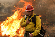 A firefighter watches a wildfire near Placenta Canyon Road in Santa Clarita, Calif., Sunday, July 24, 2016.(AP Photo/Ringo H.W. Chiu)
