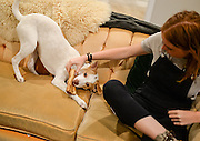 Iman plays with Abbey  in her new home in Los Angeles.