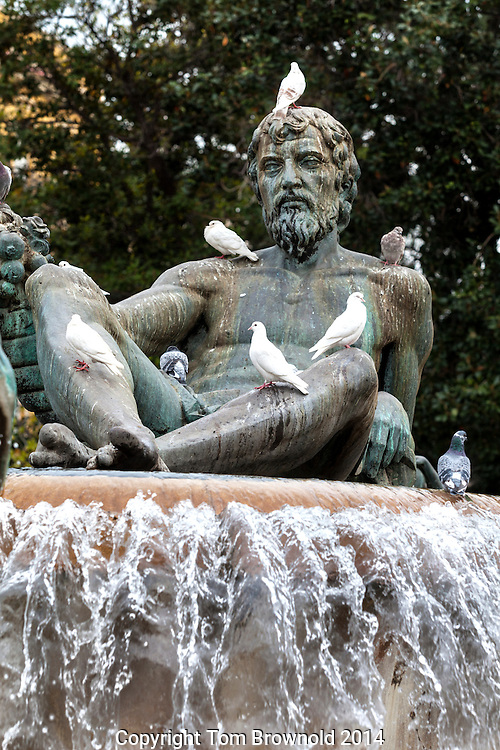 Pigeons and the Turia fountain in Valencia, Spain